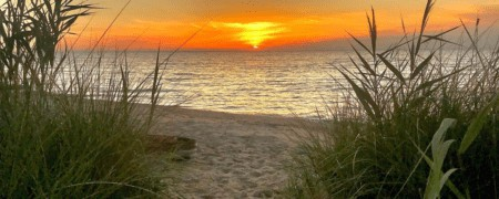 15 of the Best Lake Huron Beaches in Michigan