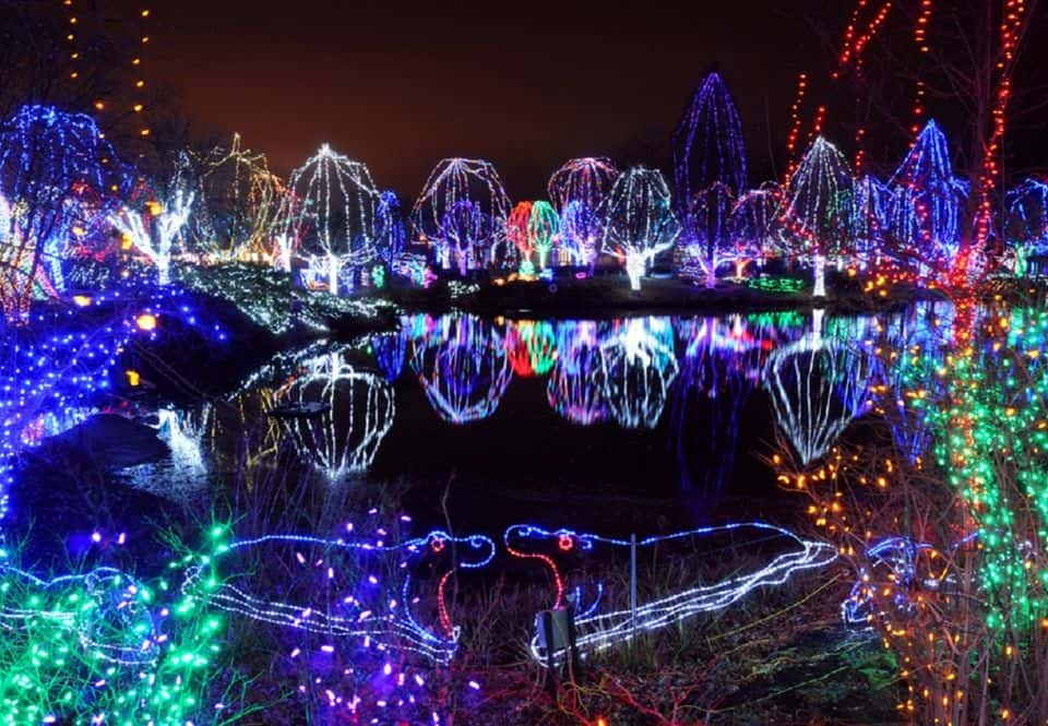 Bicentennial Park Drive Thru Lights - Grand Blanc | Michigan Holiday Light Display