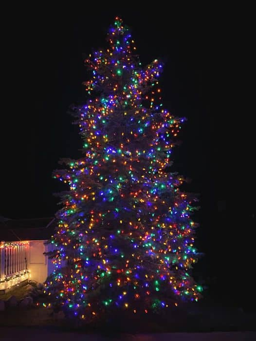 boss family christmas display charlevoix michigan | best holiday light display in michigan