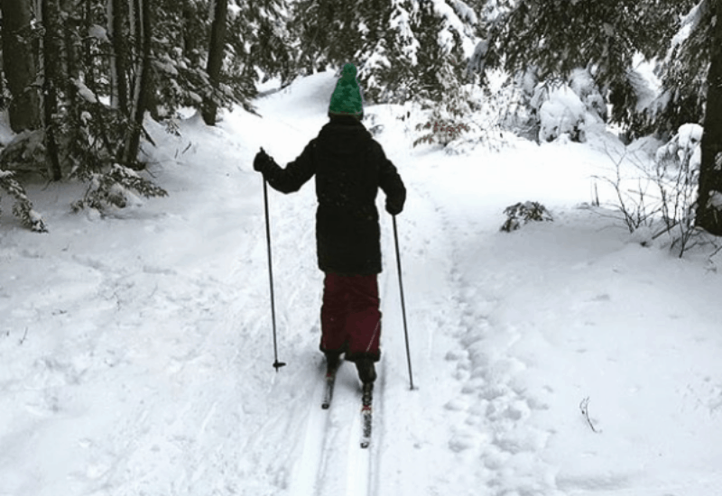 cross-country skiing in traverse city mi