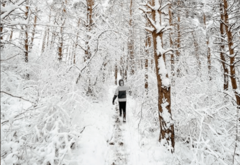 exploring Traverse City trails in winter