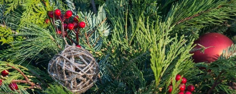 3 Unique Ways to Enjoy the Holiday Season in Michigan
