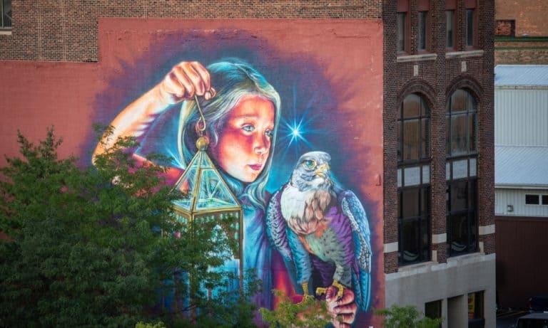 Bright Walls Girl Falcon