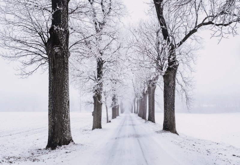 romantic winter getaways in michigan