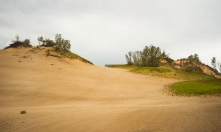 Explore Warren Dunes State Park