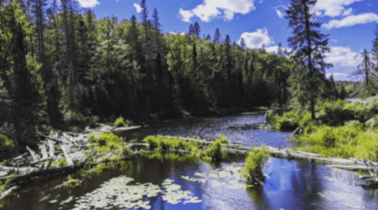 Craig Lake Take a Hike to the Highest Point in Michigan & Upper Peninsula Waterfalls