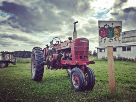 FickFarms trickdaw Visit Fick Farms for Fresh Produce & U-Pick Flowers