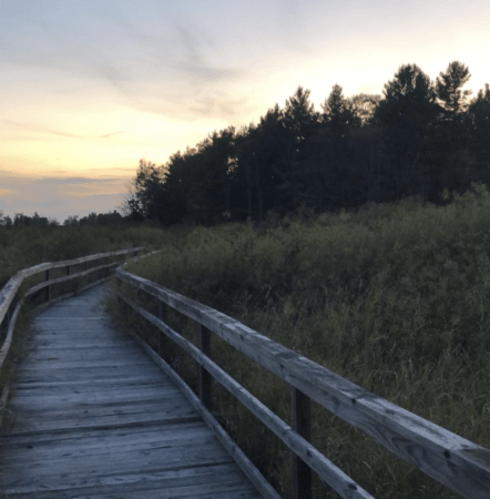 Hike the Heritage Nature Trail in Cadillac's William Mitchell State Park