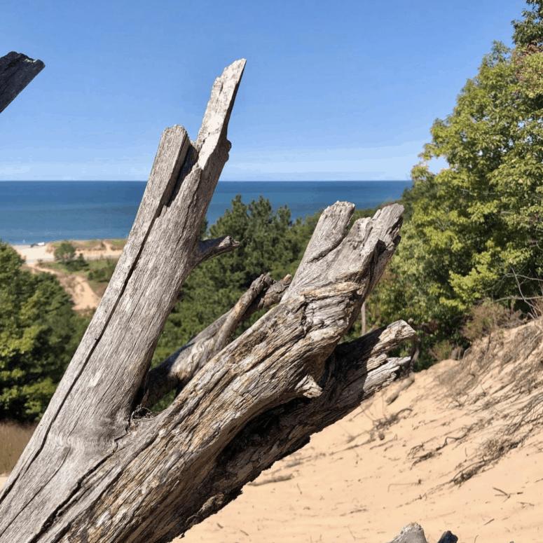 MountBaldhead 2dmwhite Scale Mount Baldhead & Visit Oval Beach