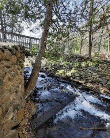 Take a Fairy Tale Adventure in Kalkaska County
