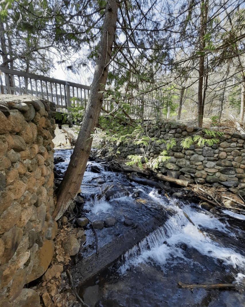 SevenBridges bluskye.jpeg Take a Fairy Tale Adventure in Kalkaska County