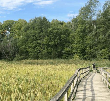 WhitePineTrail bresthebeast Walk, Hike, or Bike the White Pine Trail