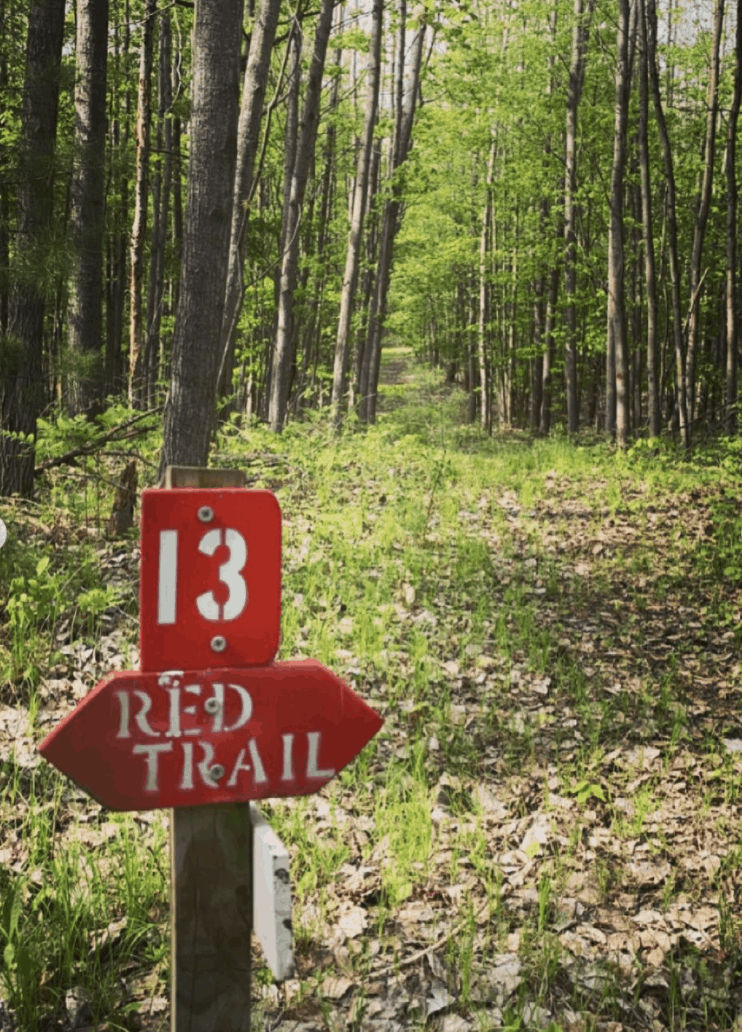 WhitePineTrail cassie.j344 1 Walk, Hike, or Bike the White Pine Trail