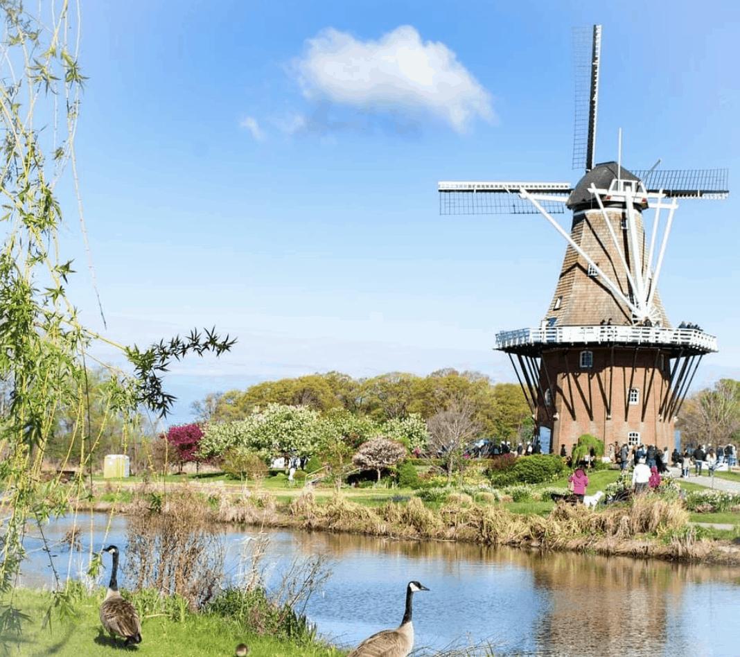 WindmillIslandGardens tamera kwist photography Visit the Netherlands at Windmill Island Gardens