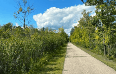 white pine trail state park MI Awesome List