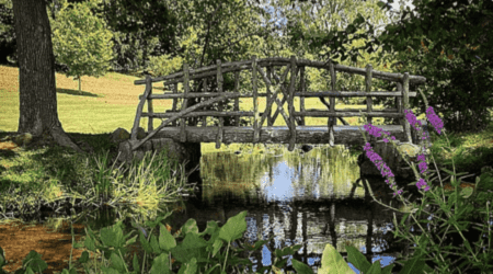 9 Best Summer Day Trips in Southcentral Michigan