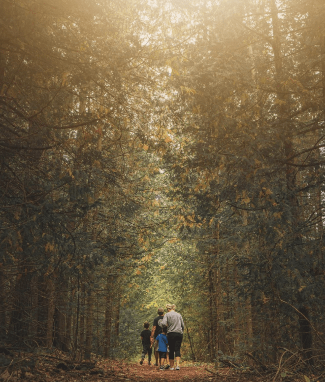 Besser Natural Area 17 Ways to Enjoy Fall in East Michigan This Year [updated 2021]