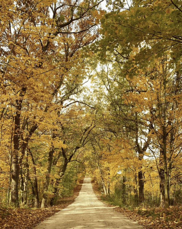 Cannonsburg Road 1 7 Can't-Miss Colorful Scenic Drives in West Michigan This Fall
