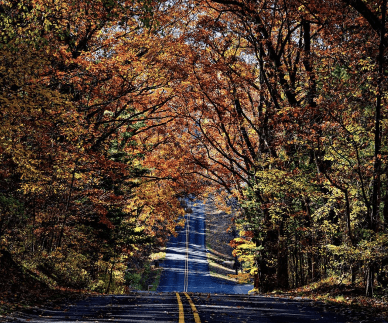 Cannonsburg Road 7 Can't-Miss Colorful Scenic Drives in West Michigan This Fall