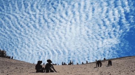 Dune Home New