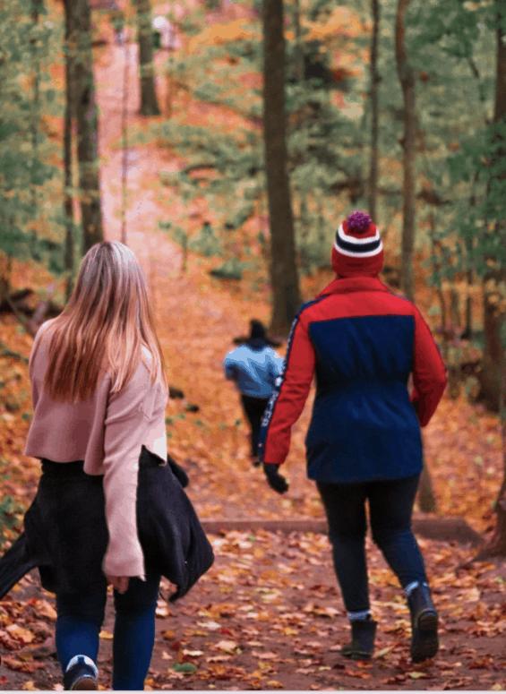 Empire Bluff Trail 1 25+ Michigan Hiking Trails for Fall Colors | Best Fall Hiking Trails in Michigan