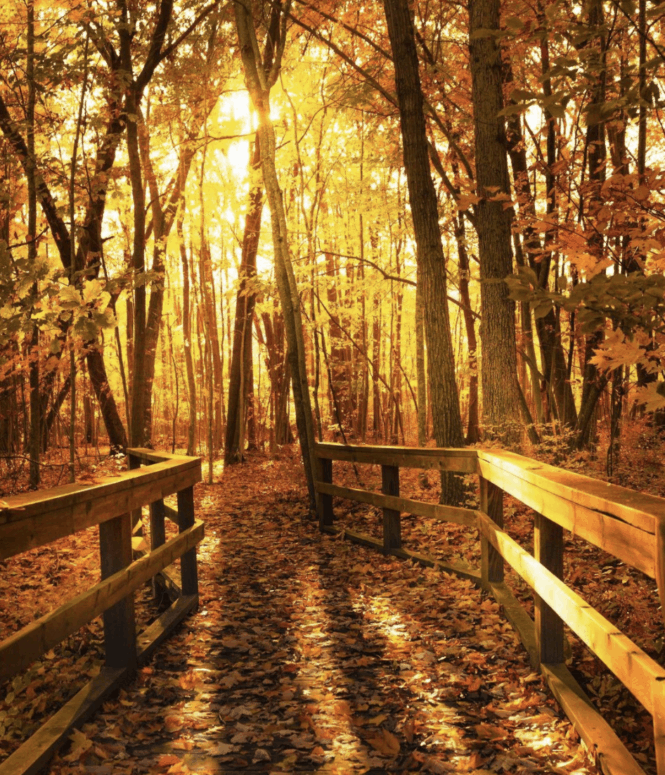 Huron County Nature Center 17 Ways to Enjoy Fall in East Michigan This Year [updated 2021]