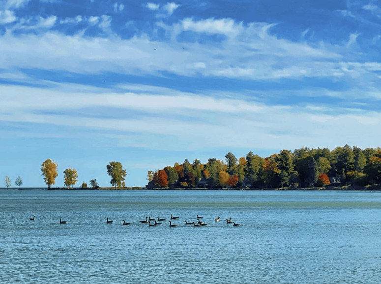 Lake Huron 7 Unique Fall Things to Do in Northern Michigan