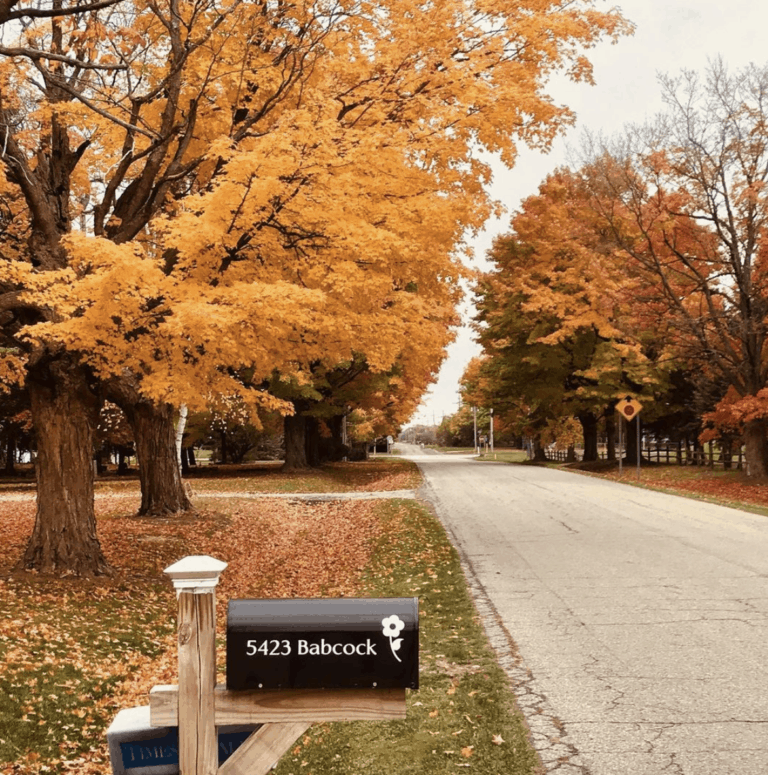 M 25 Best Scenic Fall Drives in Michigan For Stunning Color and Views