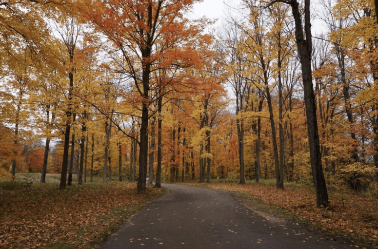 M 37 White Cloud to Newaygo Best Scenic Fall Drives in Michigan For Stunning Color and Views