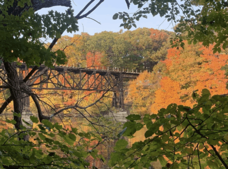 7 Can't-Miss Colorful Scenic Drives in West Michigan This Fall