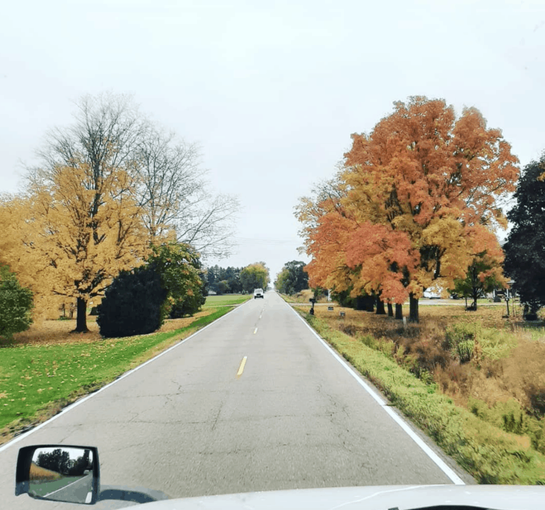 M 83 M 81 Best Scenic Fall Drives in Michigan For Stunning Color and Views