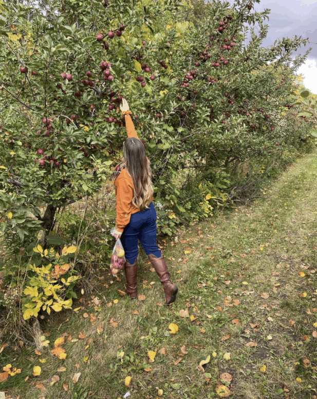 McCallums Orchard Cider Mill 1 17 Ways to Enjoy Fall in East Michigan This Year [updated 2021]