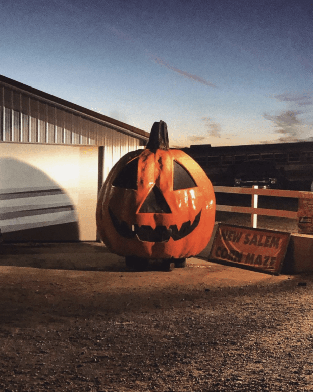 New Salem Corn Maze Top 13 West Michigan Fall Things to Do [in 2021]