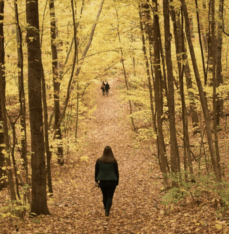 Ortonville Recreation Area 25+ Michigan Hiking Trails for Fall Colors | Best Fall Hiking Trails in Michigan