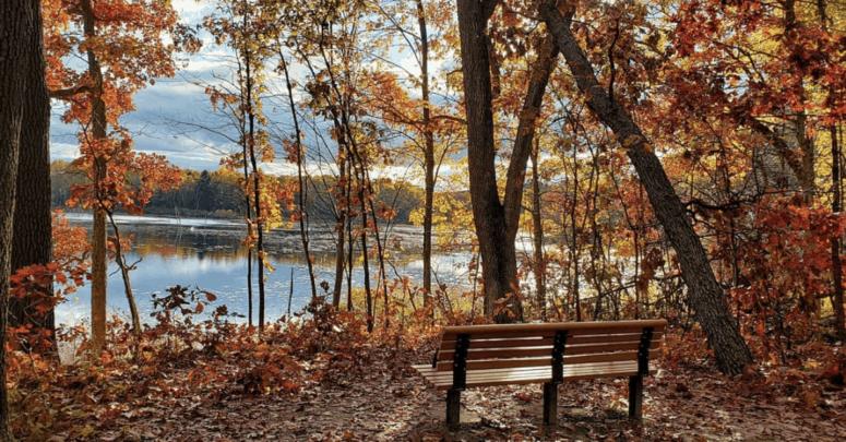 Pickerel Lake Park 25+ Michigan Hiking Trails for Fall Colors | Best Fall Hiking Trails in Michigan