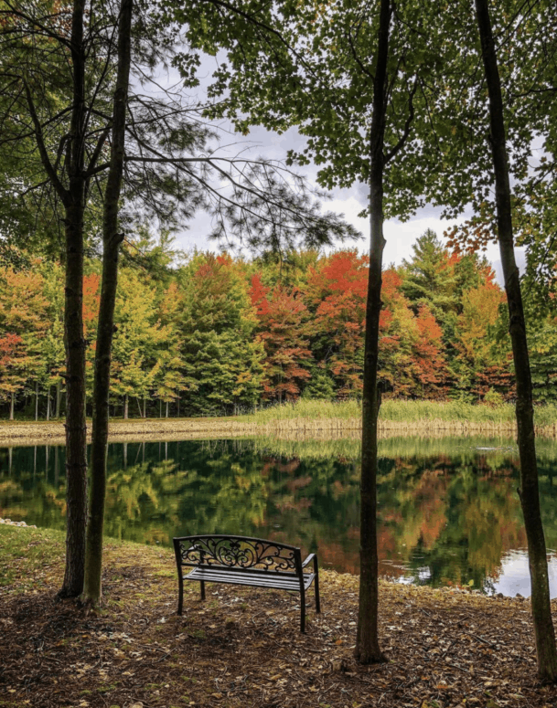 Pontaluna Road Best Scenic Fall Drives in Michigan For Stunning Color and Views