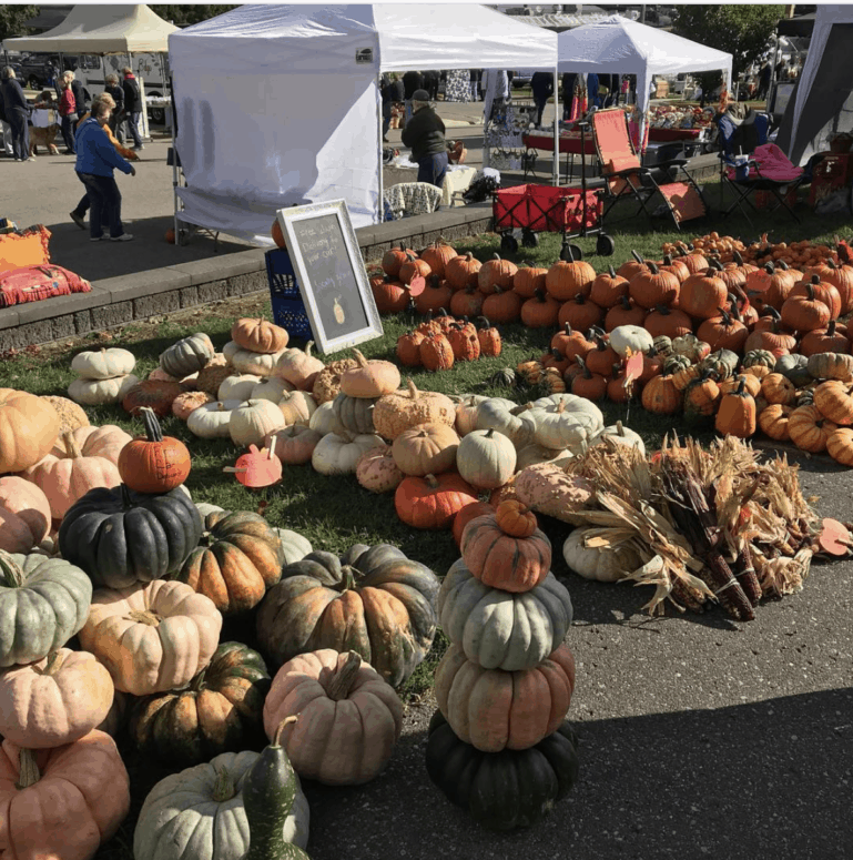 Port Austin Farmers Market 17 Ways to Enjoy Fall in East Michigan This Year [updated 2021]
