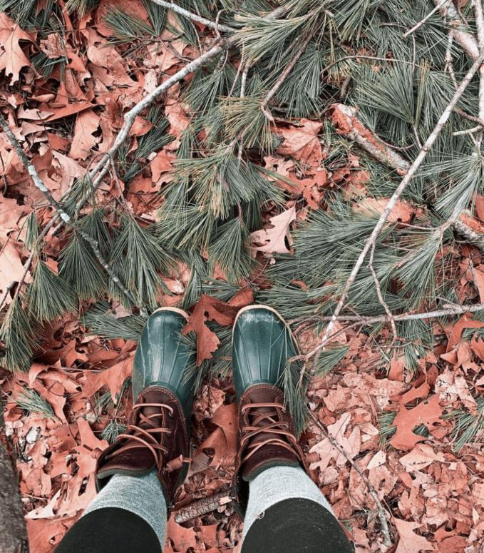 Stony Creek Metropark 25+ Michigan Hiking Trails for Fall Colors | Best Fall Hiking Trails in Michigan
