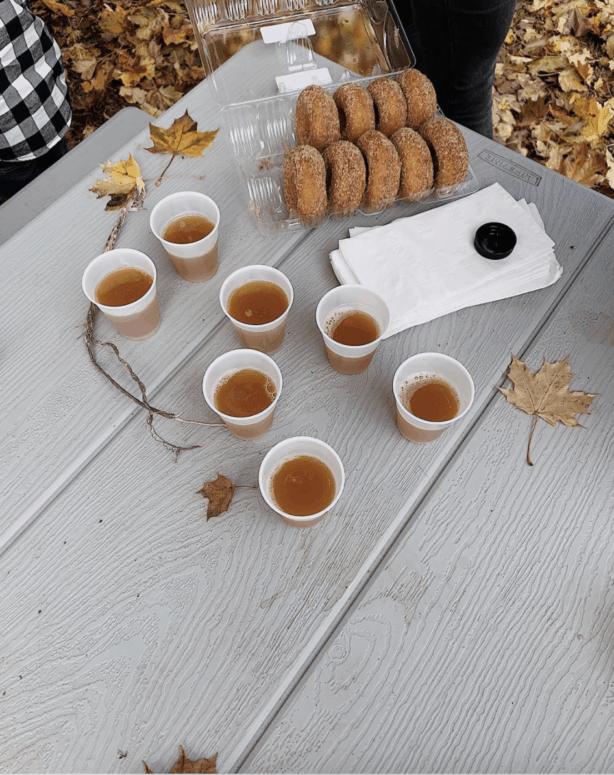 Stony Creek Orchard Cider Pick the Perfect Michigan Pumpkin | 19 Best Metro Detroit Pumpkin Patches