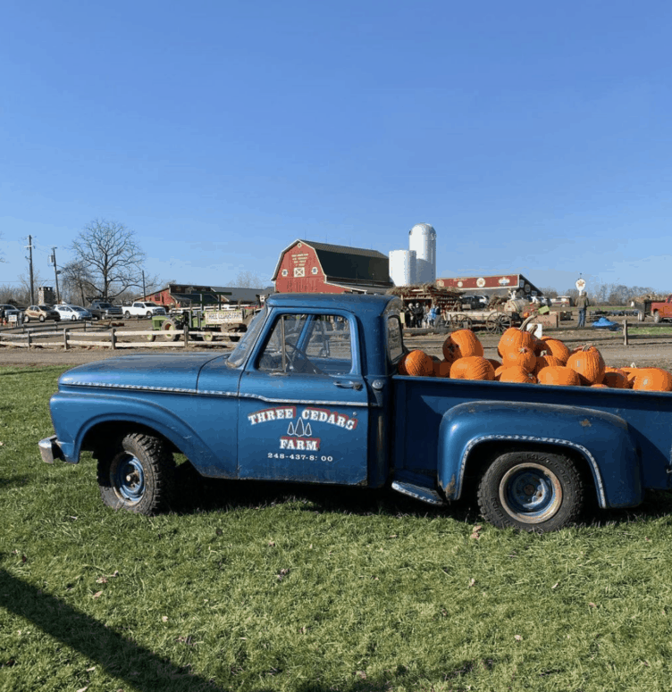 Three Cedars Farm Pick the Perfect Michigan Pumpkin | 19 Best Metro Detroit Pumpkin Patches