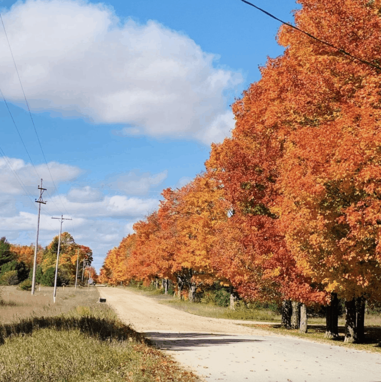 US 27 1 Best Scenic Fall Drives in Michigan For Stunning Color and Views