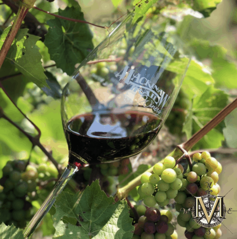 Wine Tour 1 7 Unique Fall Things to Do in Northern Michigan