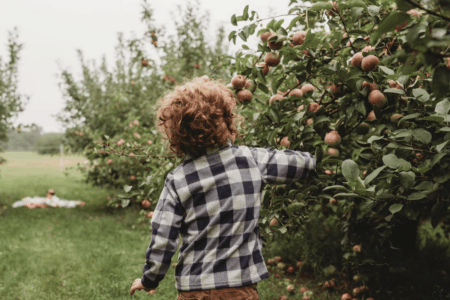 Crunch & Munch, Sip & Savor: 10 Amazing Mid-Michigan Apple Orchards & Cider Mills to Visit This Fall [updated 2021]