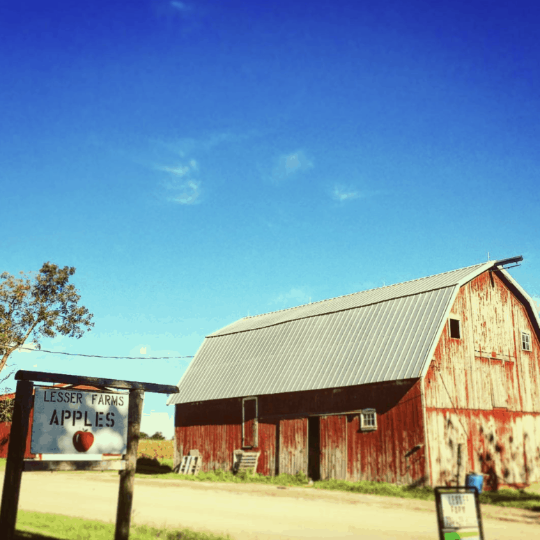 Lesser Farms And Orchard Munch & Crunch: Top 12 Apple Orchards & Cider Mills in Southcentral Michigan | Jackson, Hillsdale, Washtenaw, and Lenawee Counties