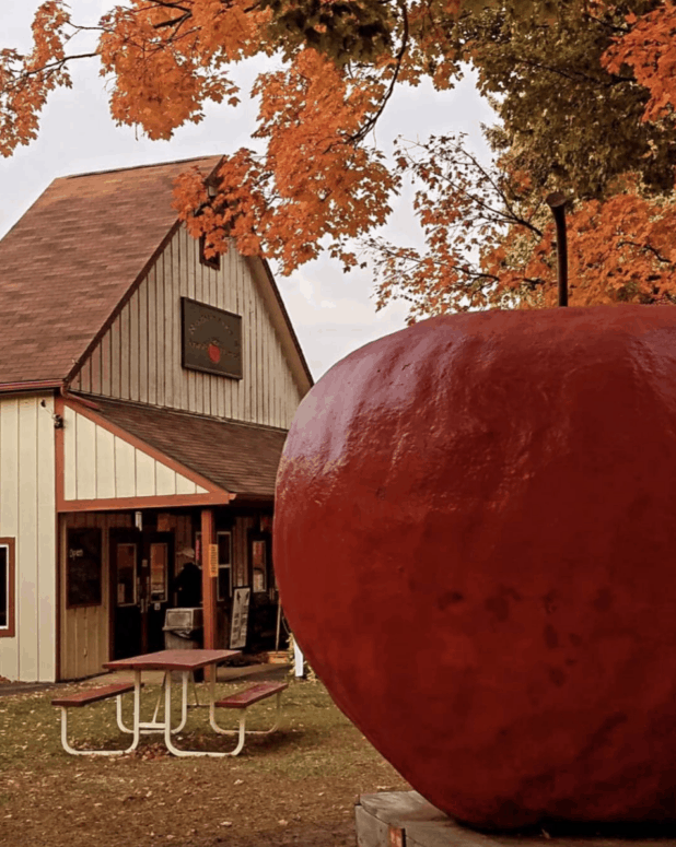 Robinettes Apple Haus and Winery 3 Crunch & Munch, Sip & Savor: 10 Amazing Mid-Michigan Apple Orchards & Cider Mills to Visit This Fall [updated 2021]