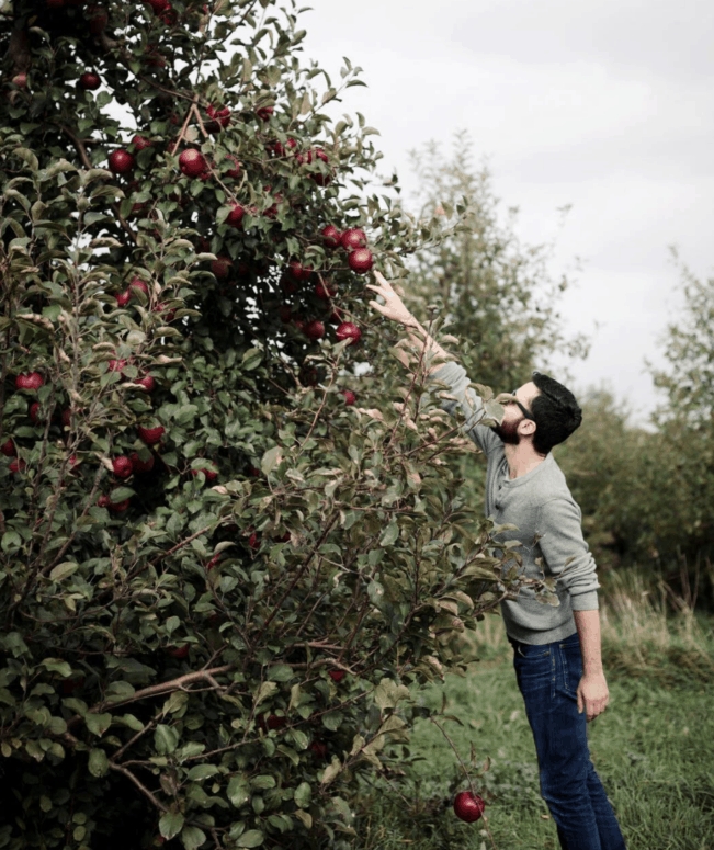 Wyricks Orchards 2 Crunch & Munch, Sip & Savor: 10 Amazing Mid-Michigan Apple Orchards & Cider Mills to Visit This Fall [updated 2021]