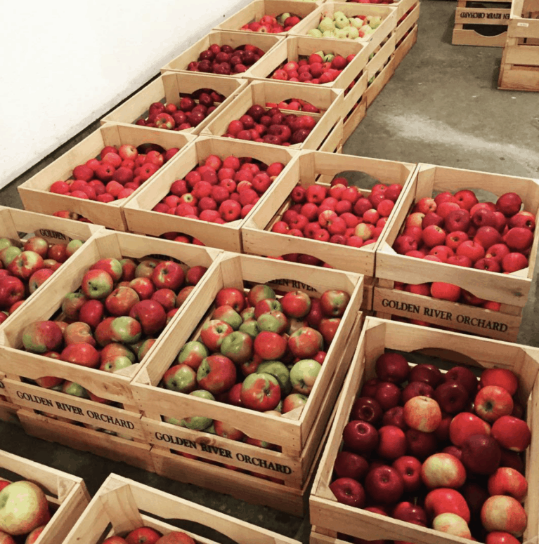 Golden River Orchard Top 10 Northern Michigan Apple Orchards & Cider Mills in 2021