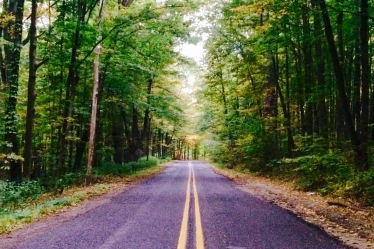 Kalamazoo Scenic Fall Drives HEADER Home New