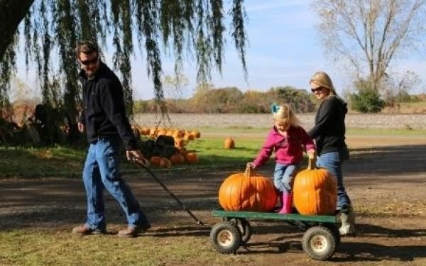 Indian Brook Trout Farm Pumpkin Picking