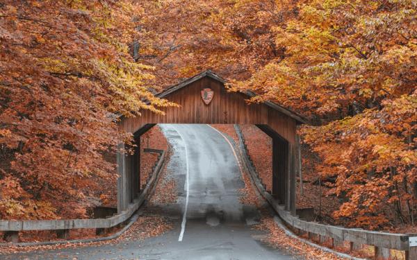 Must-Visit Fall in Michigan - Sleeping Bear Dunes